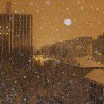 雪の日はお休み